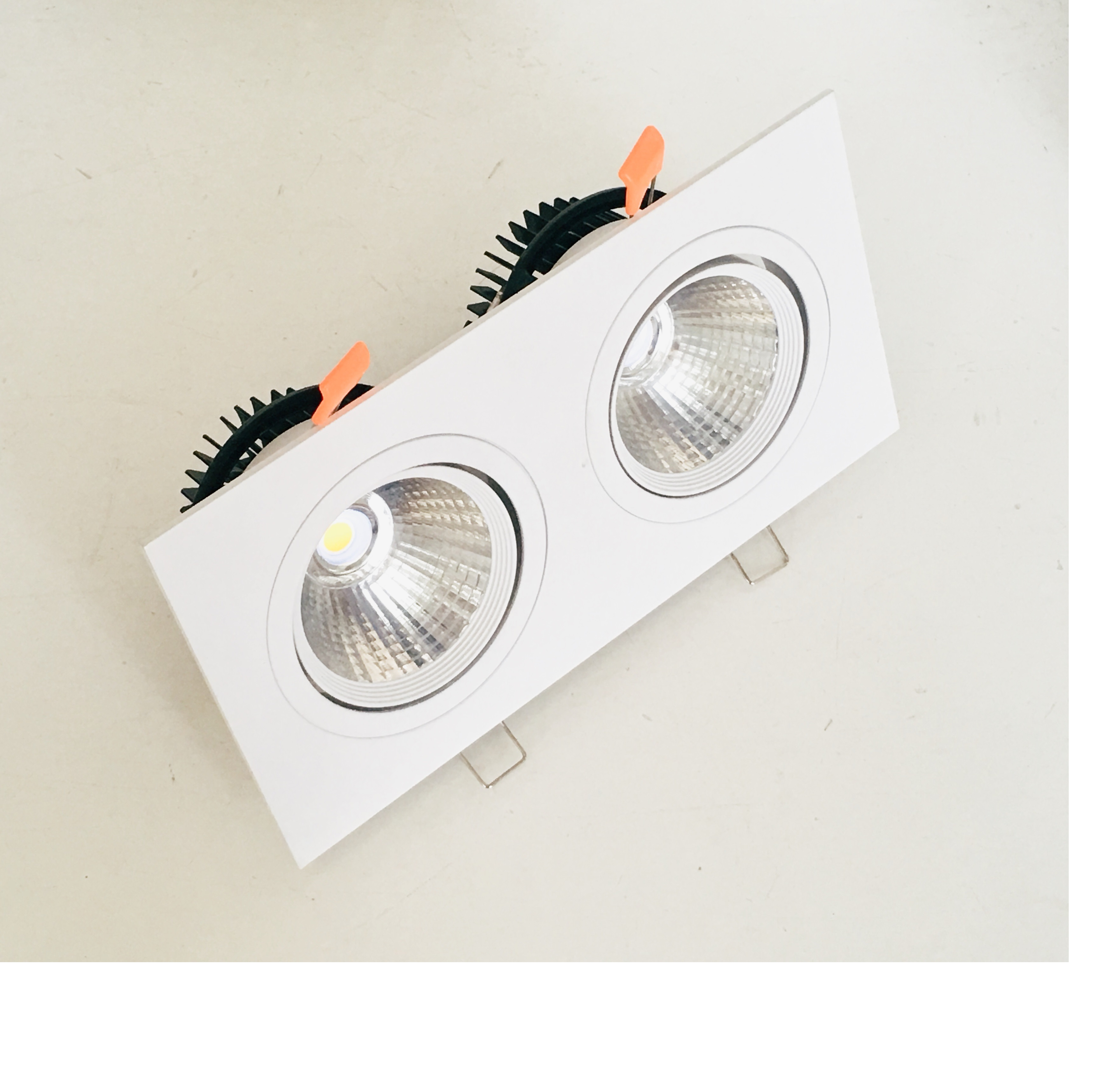 Downlight COB Philips OEM ASV-DLS2 đôi 2x10W